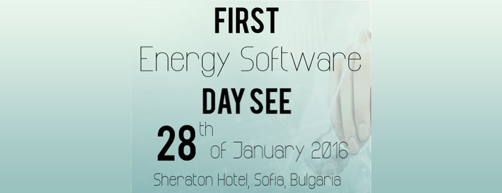 EXPERTS PUT SOFTWARE ON TOP OF THE ENERGY BUSINESS AGENDA IN SEE